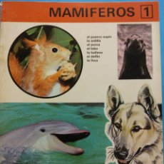 Libros antiguos: REINO ANIMAL PARA NIÑOS. CUADERNO Nº 1. MAMÍFEROS 1. EDITORIAL RAMON SOPENA. Lote 194266942