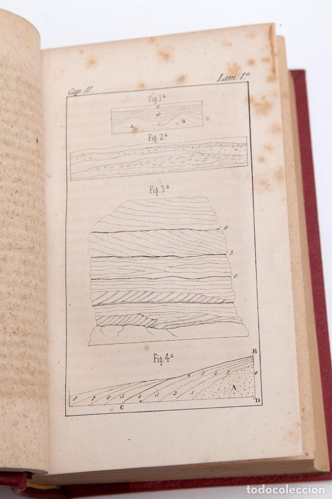 Libros antiguos: CHARLES LYELL : ELEMENTOS DE GEOLOGIA,1847, 42+1 LAMINAS , COMPLETO - 1847 - Foto 6 - 83667604
