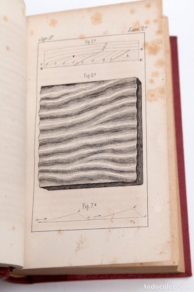 Libros antiguos: CHARLES LYELL : ELEMENTOS DE GEOLOGIA,1847, 42+1 LAMINAS , COMPLETO - 1847 - Foto 7 - 83667604