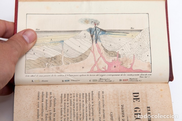 Libros antiguos: CHARLES LYELL : ELEMENTOS DE GEOLOGIA,1847, 42+1 LAMINAS , COMPLETO - 1847 - Foto 8 - 83667604