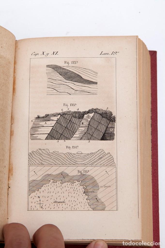 Libros antiguos: CHARLES LYELL : ELEMENTOS DE GEOLOGIA,1847, 42+1 LAMINAS , COMPLETO - 1847 - Foto 9 - 83667604