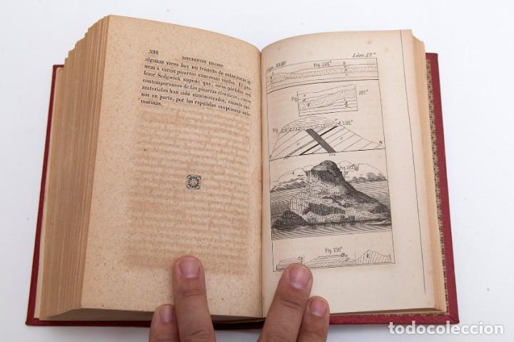Libros antiguos: CHARLES LYELL : ELEMENTOS DE GEOLOGIA,1847, 42+1 LAMINAS , COMPLETO - 1847 - Foto 14 - 83667604