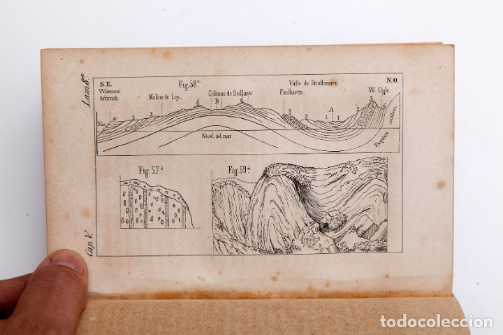 Libros antiguos: CHARLES LYELL : ELEMENTOS DE GEOLOGIA,1847, 42+1 LAMINAS , COMPLETO - 1847 - Foto 15 - 83667604
