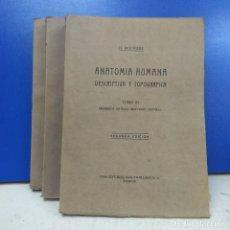Libros antiguos: LOTE 3 TOMOS ANATOMIA HUMANA DESCRIPTIVA Y TOPOGRAFICA H. ROUVIERE SEGUNDA EDICION. Lote 179180620