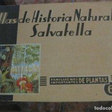 Libros antiguos: ATLAS HISTORIA NATURAL SALVATELLA Nº 6 FAMILIAS DE PLANTAS . 1 EDICION. Lote 180087606