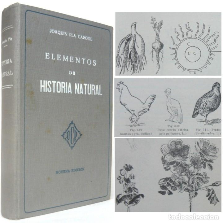 1937 - MINERALES, PLANTAS, ANIMALES - LIBRO ANTIGUO DE CIENCIAS NATURALES ILUSTRADO CON 600 GRABADOS (Libros Antiguos, Raros y Curiosos - Ciencias, Manuales y Oficios - Bilogía y Botánica)