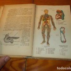 Libros antiguos: ELEMENTOS ORGANOGRAFÍA FISIOLOGÍA E HIGIENE.JOAQUÍN PLA. 1926. 150 GRABADOS - 4 LÁMINAS EN COLOR. Lote 183039302