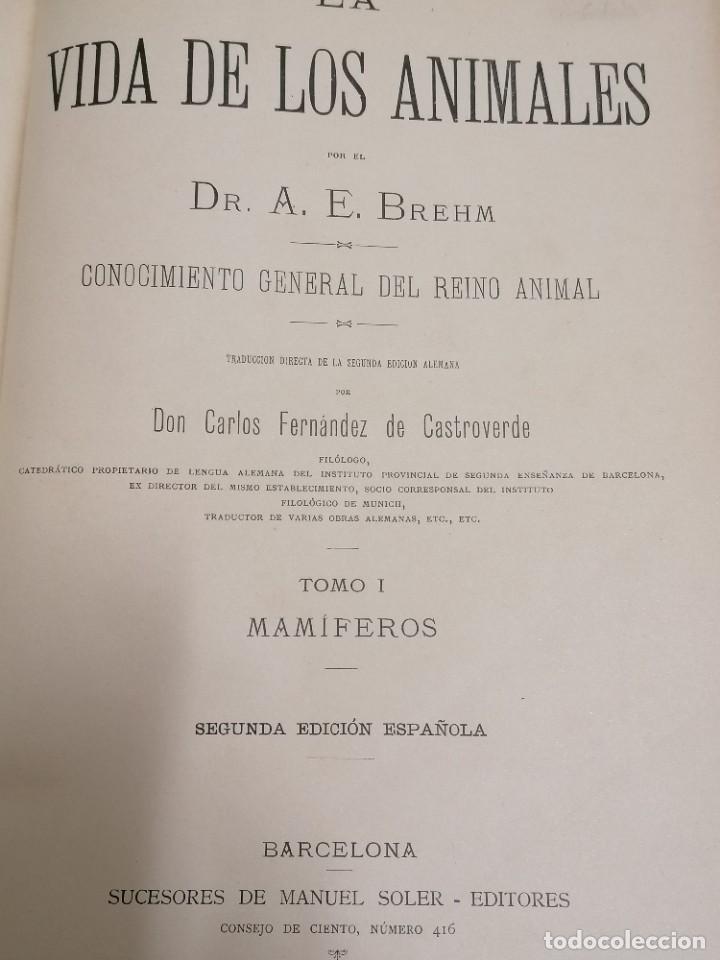 Libros antiguos: LA VIDA DE LOS ANIMALES DR.A.E.BRHEM TRADUCCIÓN FERNANDEZ CASTRO VERDE 1880-1883 6 TOMOS - Foto 14 - 183693518