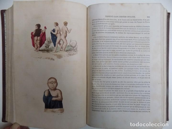 Libros antiguos: LIBRERIA GHOTICA. EXCEPCIONAL OBRA FRANCESA DE BUFFON.1852. OBRA COMPLETA 9 VOLUMENES FOLIO.GRABADOS - Foto 9 - 183743393