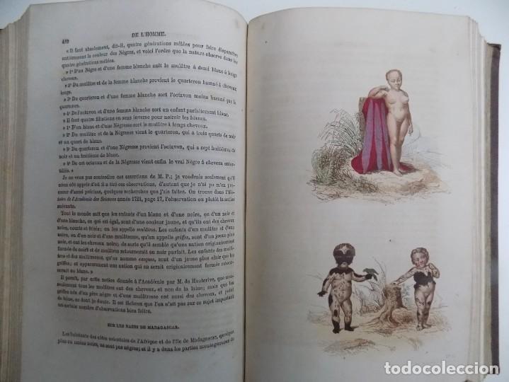 Libros antiguos: LIBRERIA GHOTICA. EXCEPCIONAL OBRA FRANCESA DE BUFFON.1852. OBRA COMPLETA 9 VOLUMENES FOLIO.GRABADOS - Foto 10 - 183743393