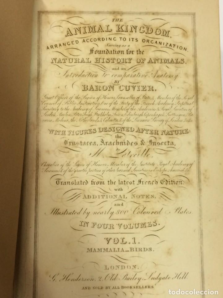 Libros antiguos: AÑO 1834-1837 - GEORGES CUVIER THE ANIMAL KINGDOM - REINO ANIMAL MÁS DE 700 LITOGRAFÍAS COLOREADAS - Foto 4 - 183779962