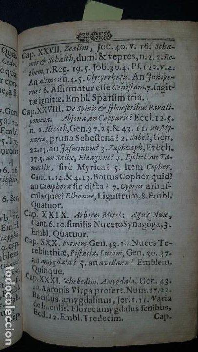 Libros antiguos: BOTÁNICA EN LA BIBLIA - Arboretum Biblicum, In quo Arbores & fructices - Foto 11 - 183862835
