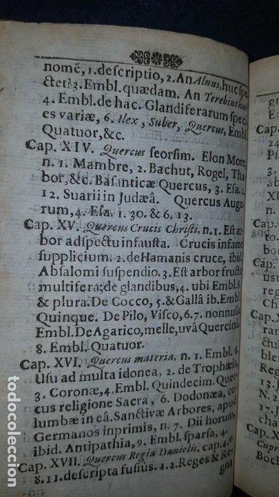 Libros antiguos: BOTÁNICA EN LA BIBLIA - Arboretum Biblicum, In quo Arbores & fructices - Foto 14 - 183862835