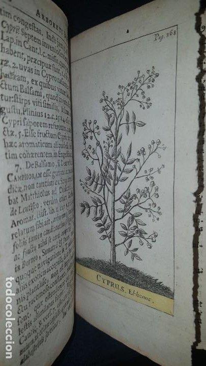 Libros antiguos: BOTÁNICA EN LA BIBLIA - Arboretum Biblicum, In quo Arbores & fructices - Foto 30 - 183862835