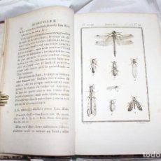 Libros antiguos: HISTOIRE NATURELLE DES CRUSCTACÉS ET INSECTOS. LATREILLE-BUFFON. DUFART TOMO 13. Lote 184054736