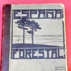 Libros antiguos: ESPAÑA FORESTAL - 1915 - 1916 - DEL Nº 1 AL 16 . Lote 184605745