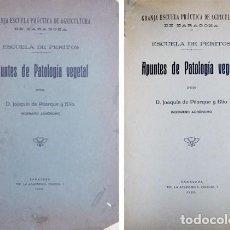 Libros antiguos: PITARQUE Y ELÍO, JOAQUÍN DE. APUNTES DE PATOLOGÍA VEGETAL. 1920.. Lote 186758900