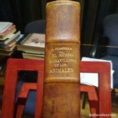 Libros antiguos: EL MUNDO MARAVILLOSO DE LOS ANIMALES-ANTONIO GUARDIOLA-CASA EDITORIAL SEGUI-S/F COMPLETA EXCELENTE. Lote 187388610