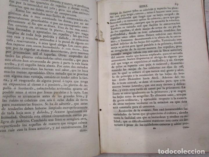 Libros antiguos: RARO - TRATADO DE LA HUERTA, Ó MÉTODO DE CULTIVAR TODA CLASE DE HORTALIZAS. BOUTELOU, Claudio 1801 + - Foto 7 - 187461440