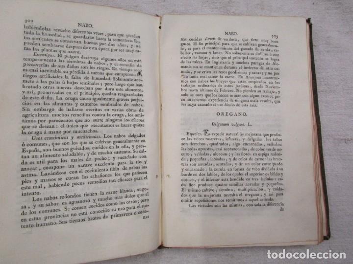 Libros antiguos: RARO - TRATADO DE LA HUERTA, Ó MÉTODO DE CULTIVAR TODA CLASE DE HORTALIZAS. BOUTELOU, Claudio 1801 + - Foto 9 - 187461440
