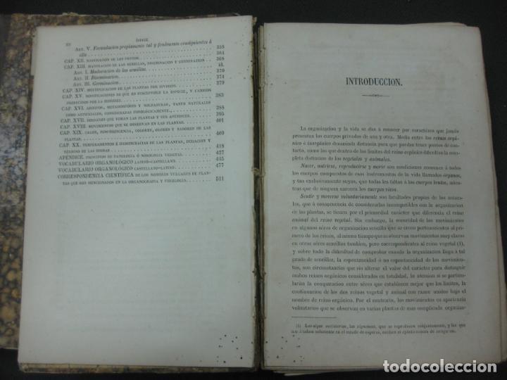Libros antiguos: CURSO DE BOTANICA O ELEMENTOS DE ORGANOGRAFIA .... MIGUEL COLMEIRO. IMP. GABRIEL ALHAMBRA 1871. 2 V. - Foto 7 - 168779992