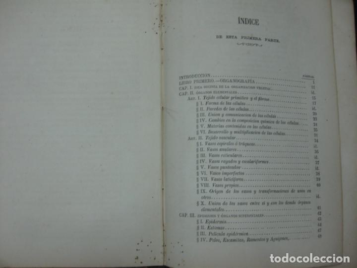 Libros antiguos: CURSO DE BOTANICA O ELEMENTOS DE ORGANOGRAFIA .... MIGUEL COLMEIRO. IMP. GABRIEL ALHAMBRA 1871. 2 V. - Foto 9 - 168779992