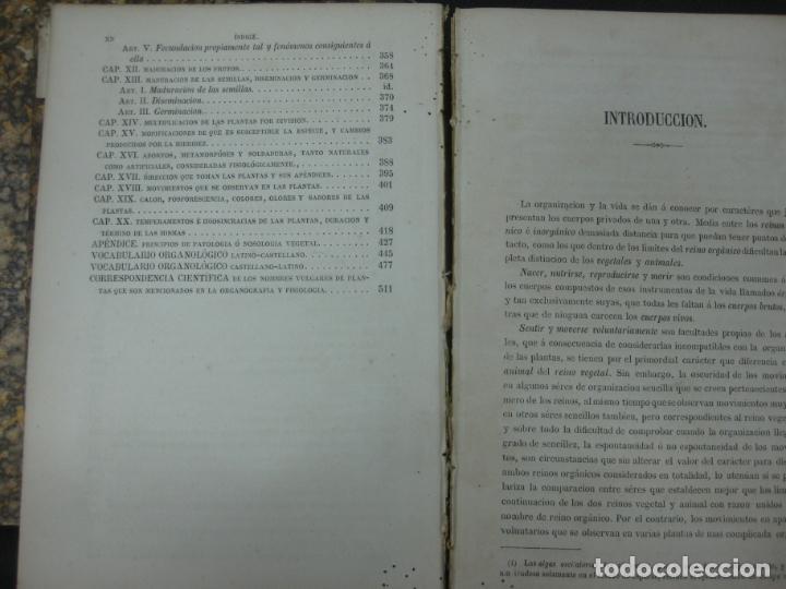 Libros antiguos: CURSO DE BOTANICA O ELEMENTOS DE ORGANOGRAFIA .... MIGUEL COLMEIRO. IMP. GABRIEL ALHAMBRA 1871. 2 V. - Foto 10 - 168779992
