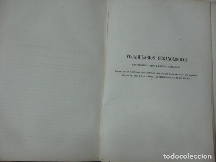 Libros antiguos: CURSO DE BOTANICA O ELEMENTOS DE ORGANOGRAFIA .... MIGUEL COLMEIRO. IMP. GABRIEL ALHAMBRA 1871. 2 V. - Foto 13 - 168779992