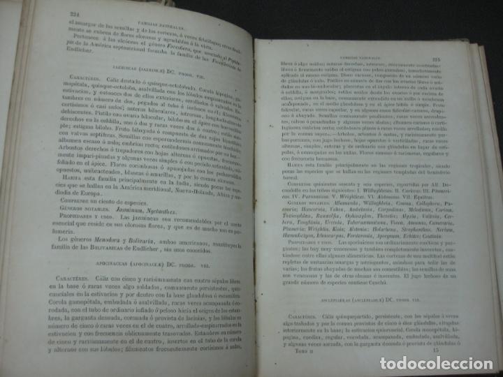 Libros antiguos: CURSO DE BOTANICA O ELEMENTOS DE ORGANOGRAFIA .... MIGUEL COLMEIRO. IMP. GABRIEL ALHAMBRA 1871. 2 V. - Foto 15 - 168779992