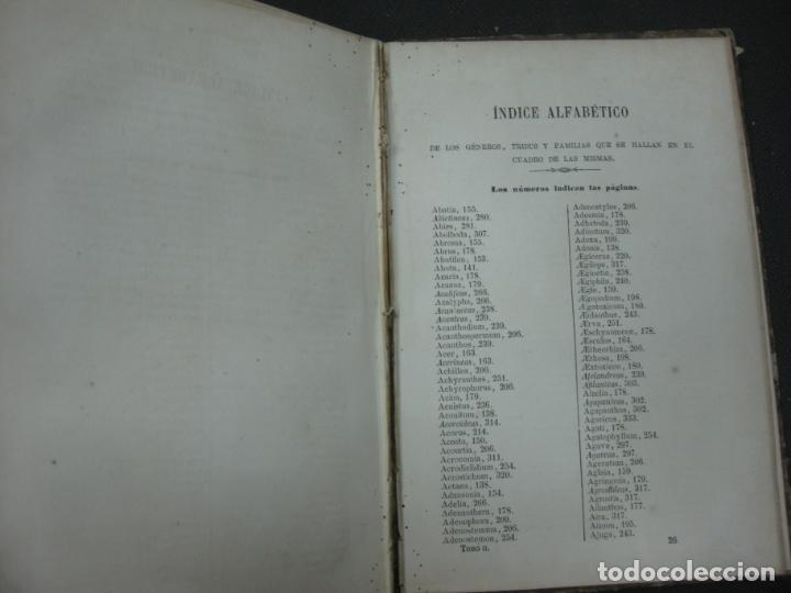 Libros antiguos: CURSO DE BOTANICA O ELEMENTOS DE ORGANOGRAFIA .... MIGUEL COLMEIRO. IMP. GABRIEL ALHAMBRA 1871. 2 V. - Foto 17 - 168779992
