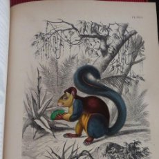 Libros antiguos: PAUL GERVAIS - LES TROIS RÈGNES DE LA NATURE. 1854. Lote 190632468