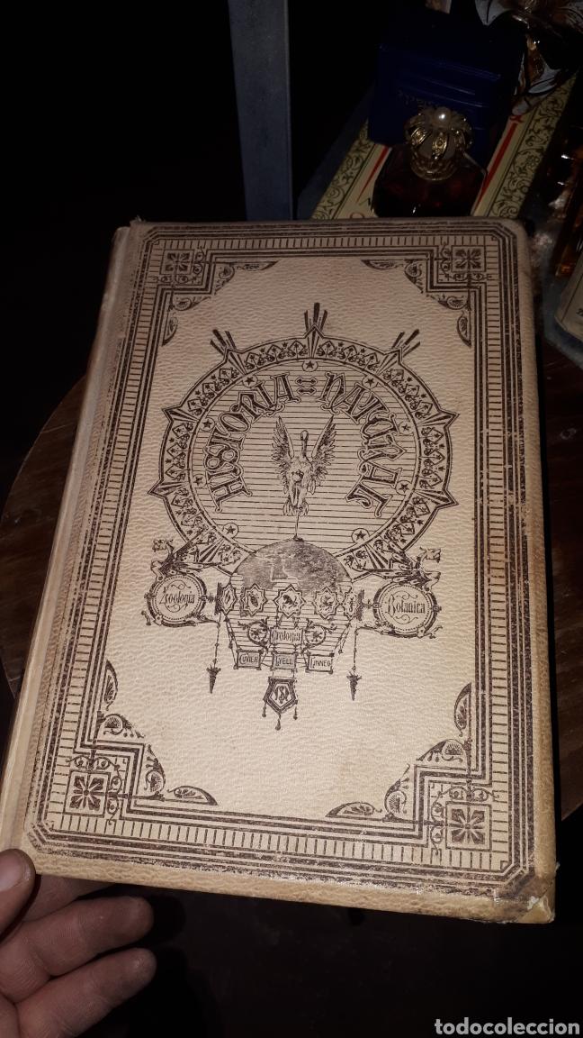 Libros antiguos: HISTORIA NATURAL BOTANICA ODON DE BUEN MONTANER Y SIMON 1893 - Foto 3 - 191303796