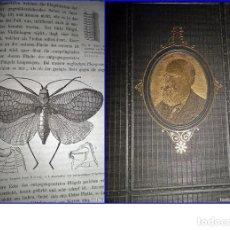 Libros antiguos: AÑO 1875. LIBRO DE CHARLES DARWIN, ILUSTRADO.. Lote 191419383