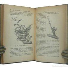 Libros antiguos: 1900 - LIBRO ANTIGUO DE BOTÁNICA - ARBOLES FRUTALES - ILUSTRADO CON 207 GRABADOS, CIENCIAS NATURALES. Lote 191450448