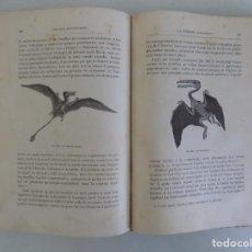 Libros antiguos: LIBRERIA GHOTICA. RARO LIBRO DE FLAMMARION. LE MONDE AVANT LA CREATION DE L ´HOMME.1886.DINOSAURIOS.. Lote 191620437