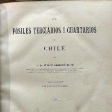 Libros antiguos: LOS FÓSILES TERCIARIOS Y CUARTARIOS DE CHILE - PHILIPPI, RODULFO AMANDO ( 1808-1904 ). Lote 193545145