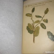 Libros antiguos: ESTUDIO INVASION DEL INSECTO LLAMADO BRUGO EN ROBLEDALES SALAMANCA Y ZAMORA 1895 AGRICULTURA PLAGAS . Lote 194235960