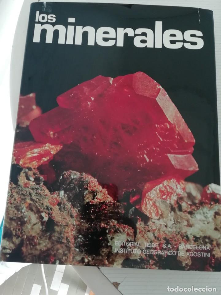 LOS MINERALES (Libros Antiguos, Raros y Curiosos - Ciencias, Manuales y Oficios - Paleontología y Geología)