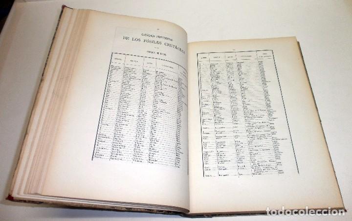 Libros antiguos: VILANOVA Y PIERA, Juan. Ensayo de Descripción Geognóstica de la Provincia de Teruel... 1863. - Foto 6 - 195280491