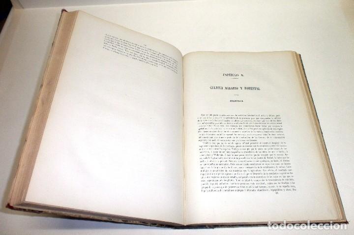 Libros antiguos: VILANOVA Y PIERA, Juan. Ensayo de Descripción Geognóstica de la Provincia de Teruel... 1863. - Foto 8 - 195280491