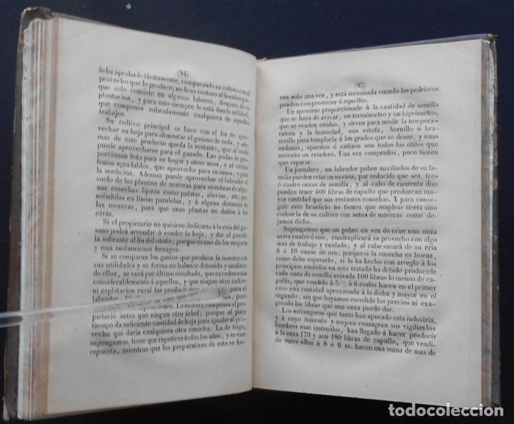 Libros antiguos: PCBROS - CULTIVO DE LA MORERA Y CRÍA GUSANO SEDA- VICTOR LANA -1847 IMP. LIT. EGAÑA - VITORIA - Foto 10 - 195385643