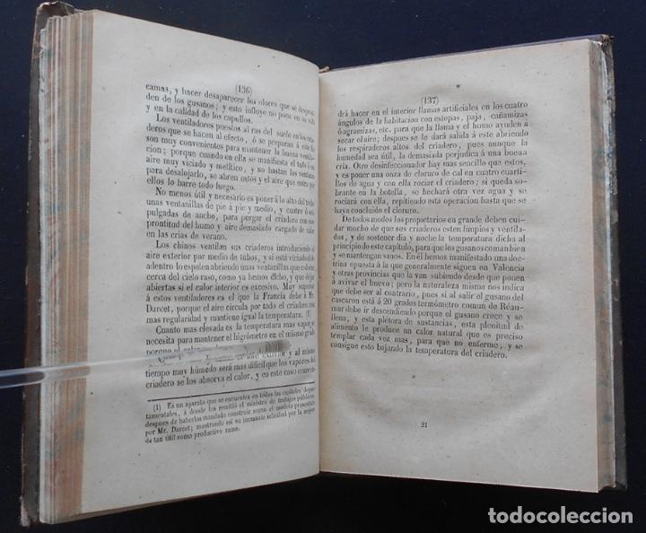 Libros antiguos: PCBROS - CULTIVO DE LA MORERA Y CRÍA GUSANO SEDA- VICTOR LANA -1847 IMP. LIT. EGAÑA - VITORIA - Foto 11 - 195385643