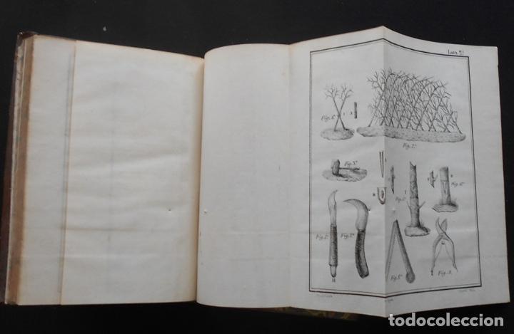 Libros antiguos: PCBROS - CULTIVO DE LA MORERA Y CRÍA GUSANO SEDA- VICTOR LANA -1847 IMP. LIT. EGAÑA - VITORIA - Foto 15 - 195385643