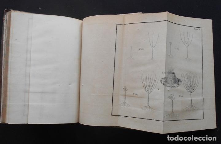 Libros antiguos: PCBROS - CULTIVO DE LA MORERA Y CRÍA GUSANO SEDA- VICTOR LANA -1847 IMP. LIT. EGAÑA - VITORIA - Foto 16 - 195385643