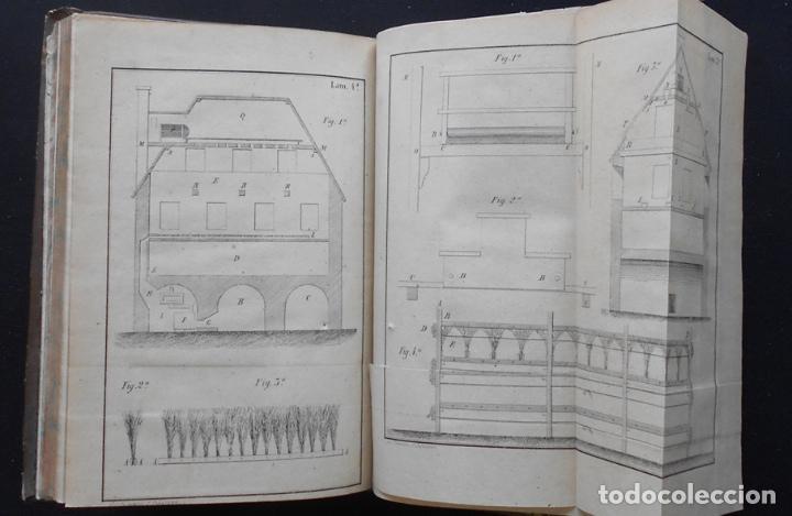 Libros antiguos: PCBROS - CULTIVO DE LA MORERA Y CRÍA GUSANO SEDA- VICTOR LANA -1847 IMP. LIT. EGAÑA - VITORIA - Foto 17 - 195385643