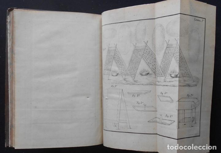 Libros antiguos: PCBROS - CULTIVO DE LA MORERA Y CRÍA GUSANO SEDA- VICTOR LANA -1847 IMP. LIT. EGAÑA - VITORIA - Foto 19 - 195385643