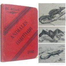 Libros antiguos: 1892 - ANIMALES INSECTÍVOROS - LIBRO ANTIGUO DE ZOOLOGÍA, ILUSTRADO CON 226 GRABADOS - BIOLOGÍA. Lote 195488453