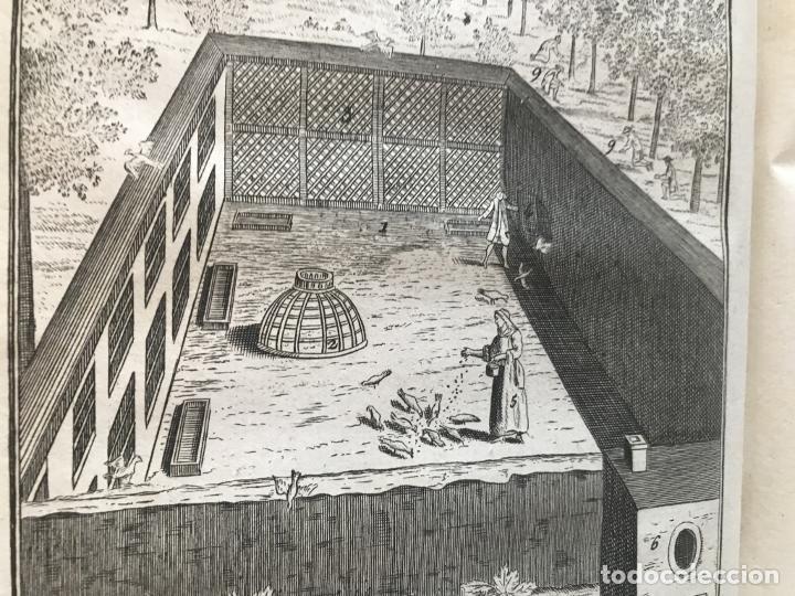 Libros antiguos: La nouvelle Maison rustique..., 2 tomos (IyII), 1790. L. Liger. Posee 41grabados y figuras - Foto 10 - 198399371