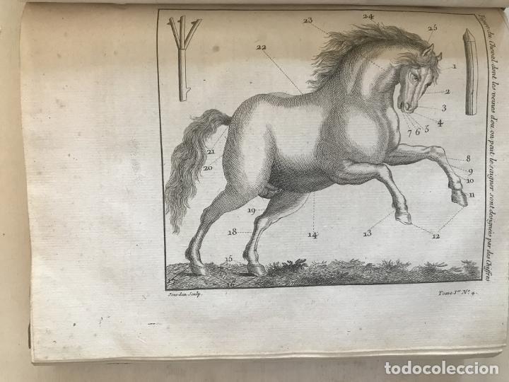 Libros antiguos: La nouvelle Maison rustique..., 2 tomos (IyII), 1790. L. Liger. Posee 41grabados y figuras - Foto 11 - 198399371
