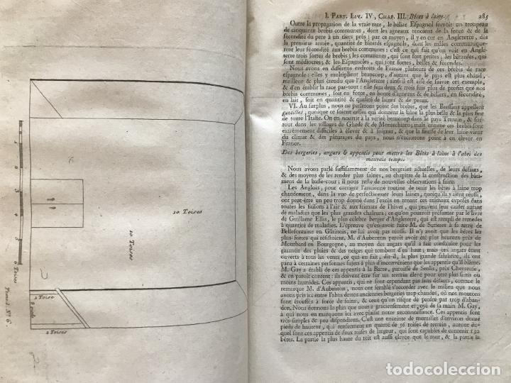 Libros antiguos: La nouvelle Maison rustique..., 2 tomos (IyII), 1790. L. Liger. Posee 41grabados y figuras - Foto 13 - 198399371
